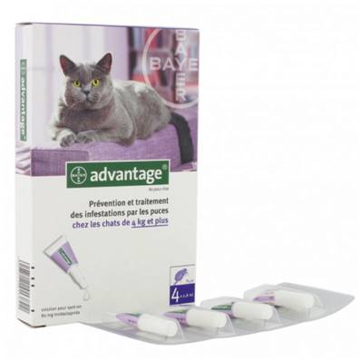 ADVANTAGE 80 LARGE (> 4 Kg) Cats en 4 pipettes