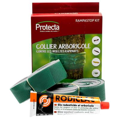COLLIER ARBORICOLE 2x2m + TUBE GLU 135Gr + Kit collier